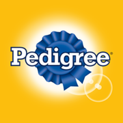 PEDIGREE® Adult Complete Nutrition for Dogs Steak & Vegetable Flavor