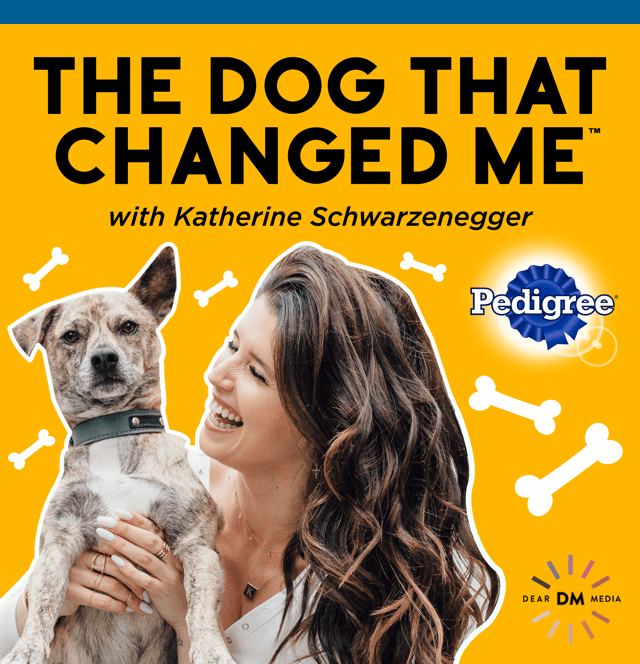 Katherine Schwarzenegger and dog