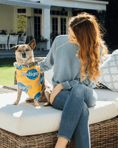 Katherine Schwarzenegger and dog in pedigree outfit