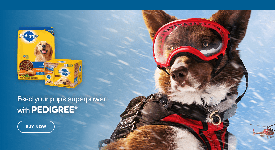 Feed your pup's superpower with PEDIGREE®
