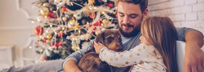 Holiday Gifts for Dogs and Dog Lovers